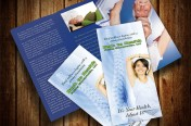 Back to Health Chiropractic Brochure