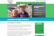 Spring Meadows Academy website