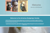 American Budgerigar Society Website Design
